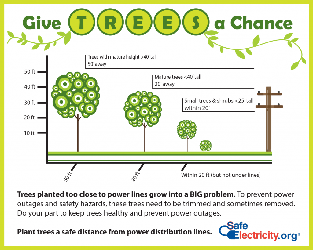 Dont Let Trees Cause Problems With Power Lines Bmu Bad Electrical Panel Wiring Safety Hazards And Safe Shade To Boost Your Energy Efficiency A Natural Way Reduce Carbon Footprint However If Those Are Planted In The Wrong Location